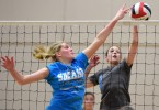 volley-ball (14)