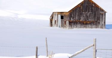hiver (610)