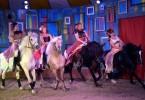 cirque (99)