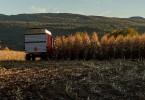 Le temps des récoltes Alain Caron