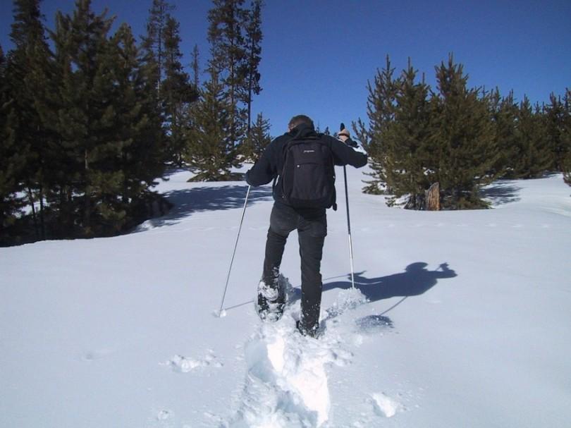 snowshoeing-3866_960_720