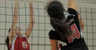 Volley 097mod